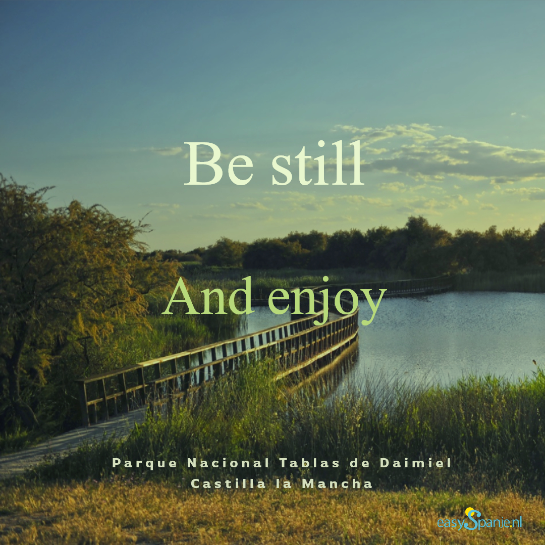 Be still and enjoy